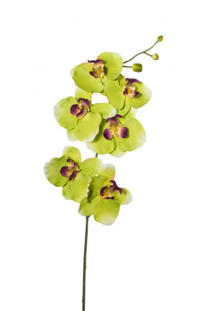 Művirág ORCHIDEA sárga